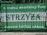 flagi_069_strzyza_01