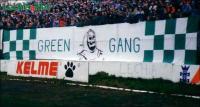 flagi_048_greengang_01