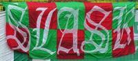 flagi_261_slask_00