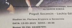 Bilet z sezonu 2014-2015 ze spotkania 2015.03.13.Pogoń Szczecin-Lechia Gdańsk